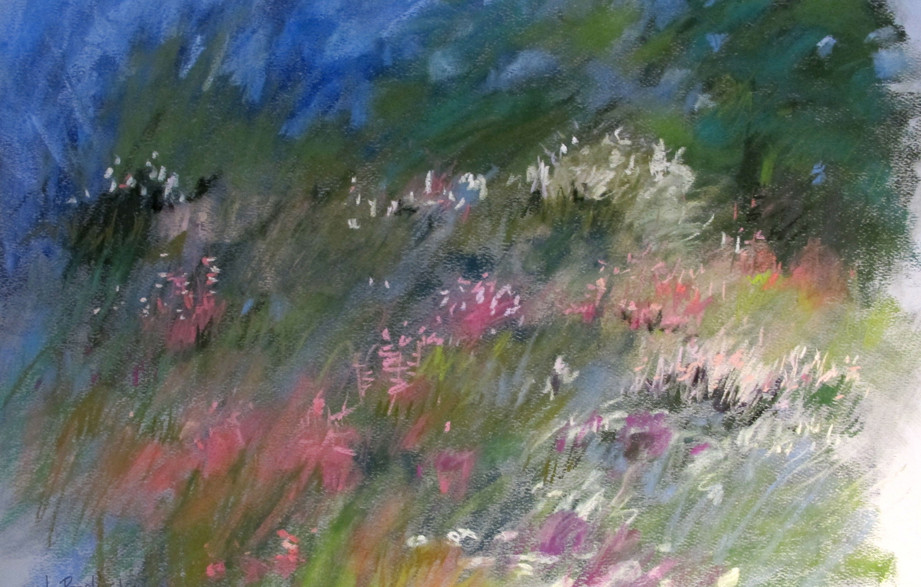 ipression: spring meadow