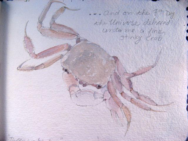 crab - watercolor