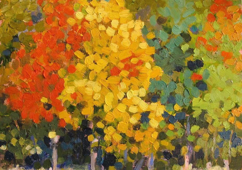 study, autumn trees, northlake state park 1