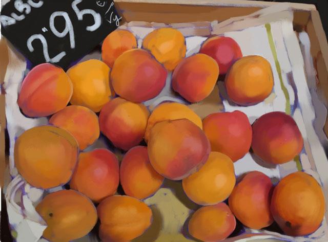 apricots-JPEG-RESIZED.jpg