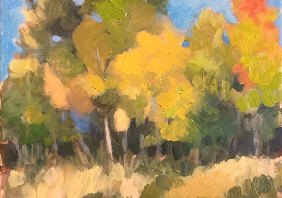 study, autumn trees, northlake state park 2