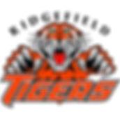 Tiger_Logo_Hi_Res.jpg