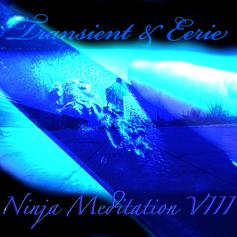 ninja meditation8.png