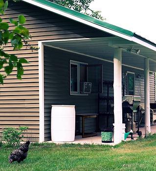 homestead_1.jpg