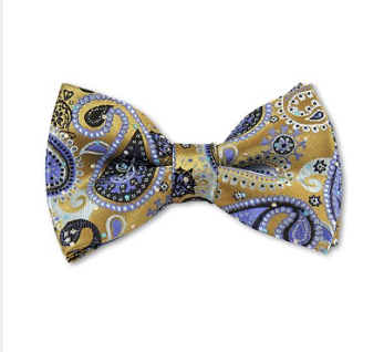 MEN'S PRE-TIED STEEL BLUE ON ANTIQUE GOLD WOVEN PAISLEY