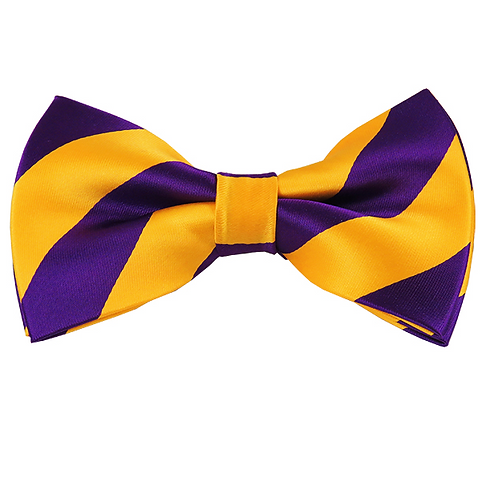 MEN'S PRE-TIED PURPLE AND GOLD BOW TIE