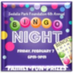 bingo 2020 social block.jpg