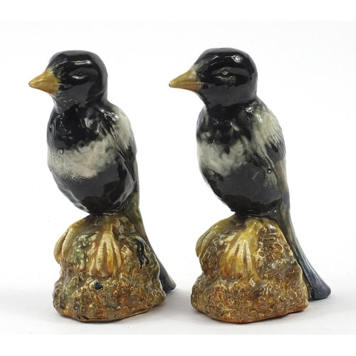 Bretby, pair of magpies