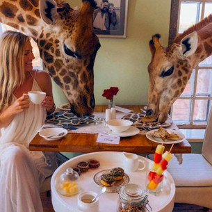 10 Of The World's Most Instagrammable Hotels