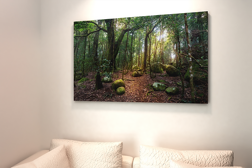Enchanted Forest Photo | Light in the Path | Canvas