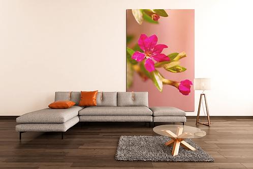 Pink Flower Photo   Close Up Shot   Canvas