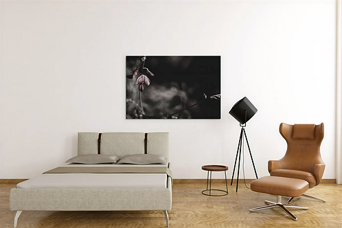 Dulled Flower Single Again Missing You Photo | Canvas
