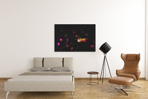 Slow Motion Capture   War of Insects at Night Photo   Canvas