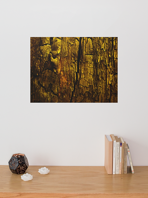 Tree Bark Golden Color | Canvas