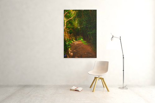 Heaven's Pathway | Canvas Print Archival Quality