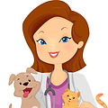Mobile House Call Veterinarian Bucks County