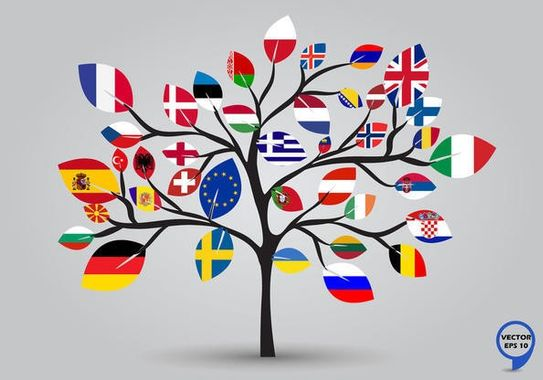 arbre-europe_seve-illustration-article-5