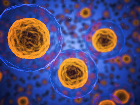 Are your Cells Inflamed?