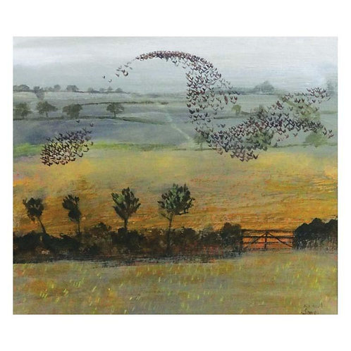 Dry Red Card -Starlings
