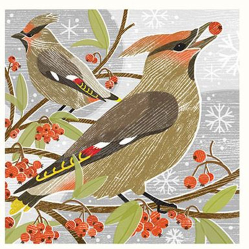 Canns Down Christmas Card Pack/5 -Waxwings