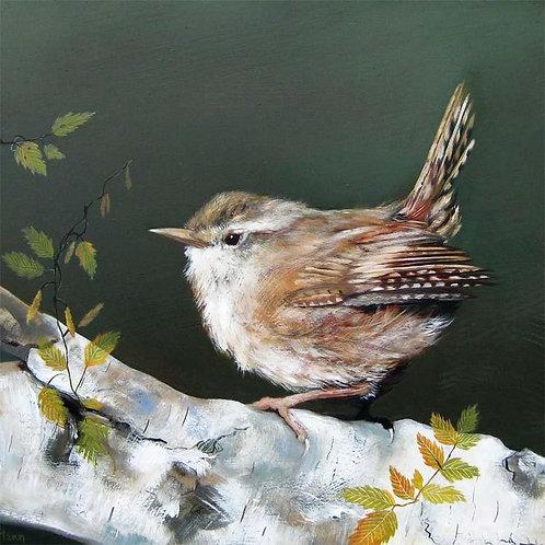 Dry Red Card -Ruffled Wren