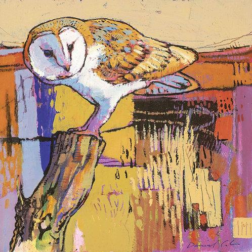 Dry Red Card -Barn Owl