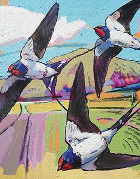DO021-Swallows-by-Daniel-ColeCMYK.webp
