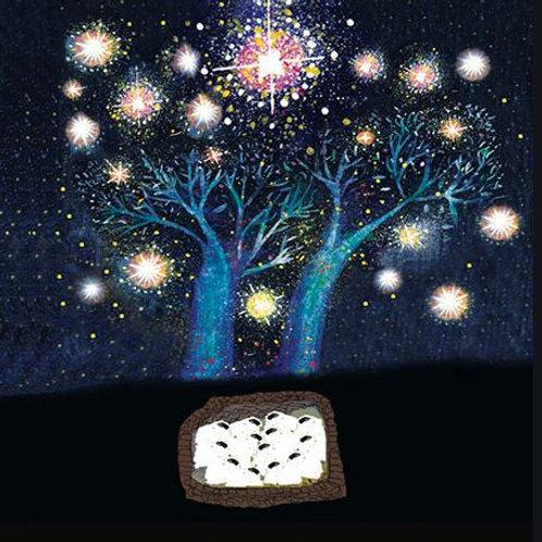 Canns Down Christmas Card Pack/5 - Sheepfold Lights