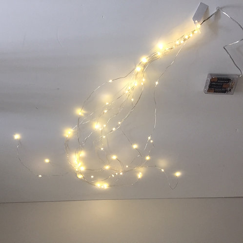 LED Bunch Lights x 60 lights