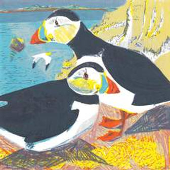 Dry Red Card -Puffins