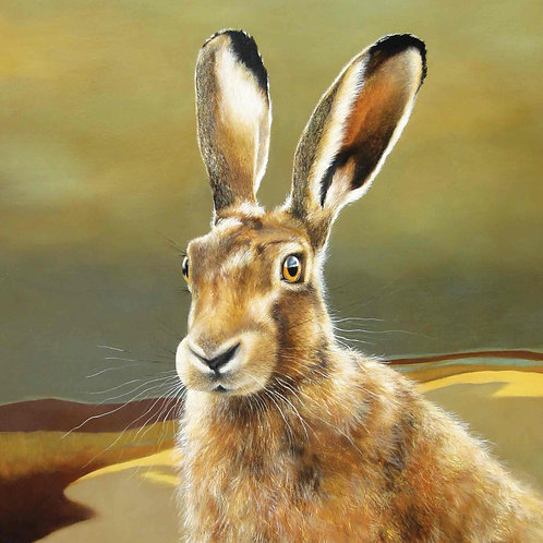 Dry Red Card -Hare on the Moor