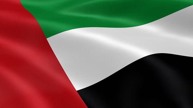 abudhabiflag.jpg