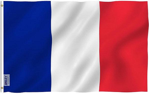 france flag.jpg