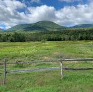 Catskills wilderness
