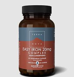 easy-iron-576x600.jpg