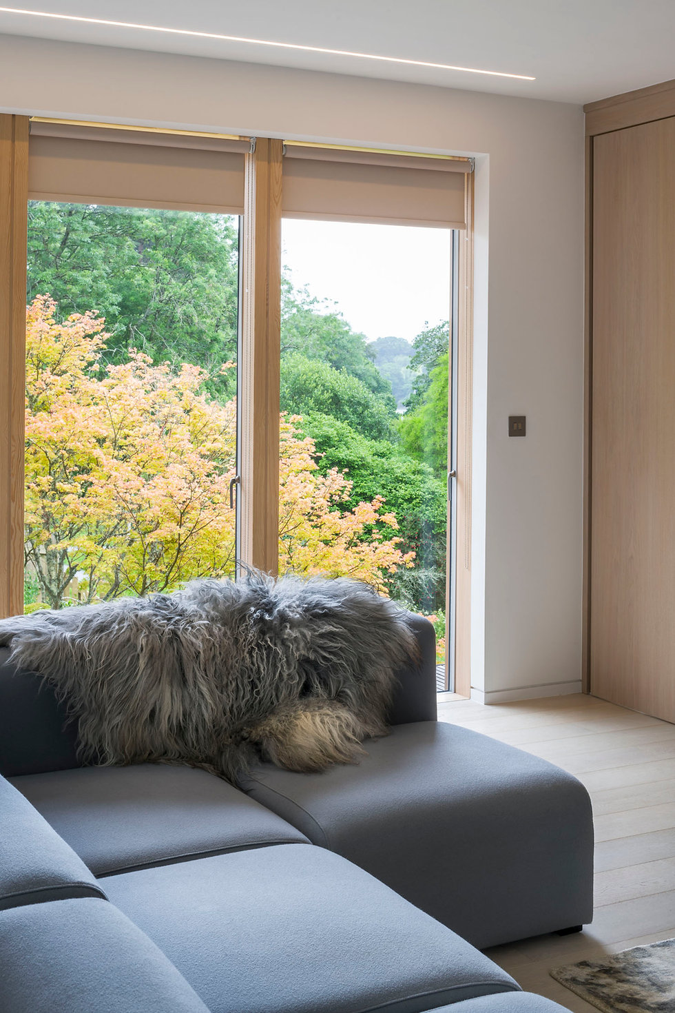 KAST Architects - Sylvania - Living room view
