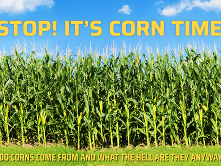 STOP! It's corn time!