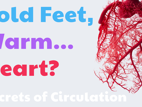 Cold Feet, Warm... Heart? Secrets of Circulation