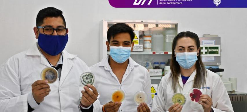 Estudiante de la Universidad Tecnológica de la Tarahumara gana concurso de química a nivel nacional