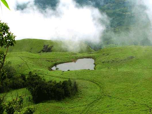 Offbeat Destinations (Part 2) - Chembra Peak