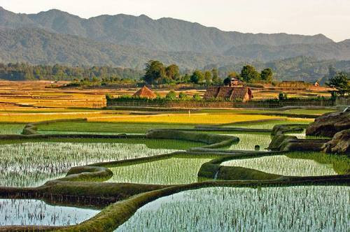 Offbeat Destinations (Part 3) - Ziro