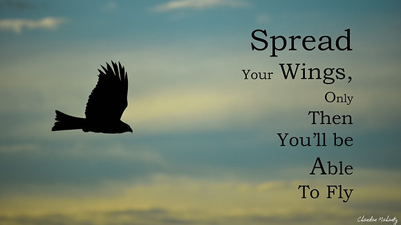 Spread your wings - Poster