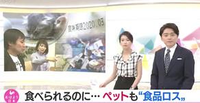 【メディア】NHKおはよう日本でcocoroが紹介されました