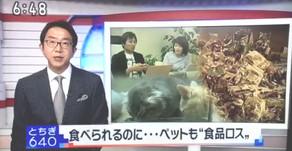 【メディア】NHKとちぎ640でcocoroが紹介されました