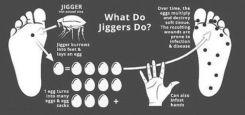 Jigger2.jpg