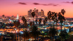 Top 6 Hot New Businesses in Los Angeles
