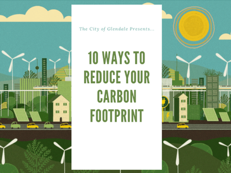 10 Ways to Reduce your Carbon Footprint!