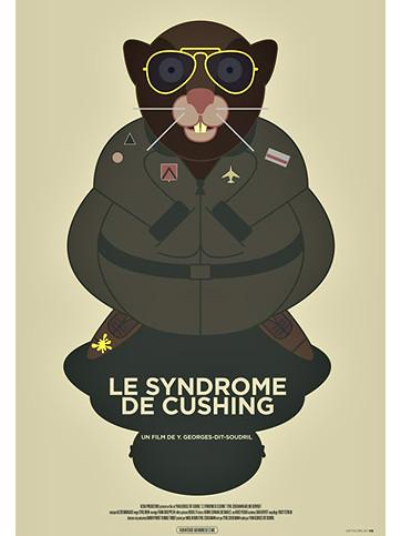 Le Syndrome De Cushing (2011)