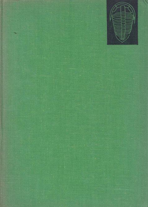 Dvořák J. - Růžička B., Geologická minulost země