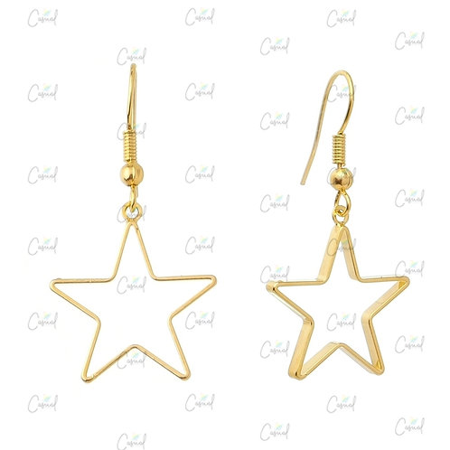 Earring with Hook and Star